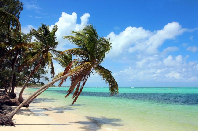 TRAVEL SALE - Paquete a Punta Cana 7 noches - 15 de Junio