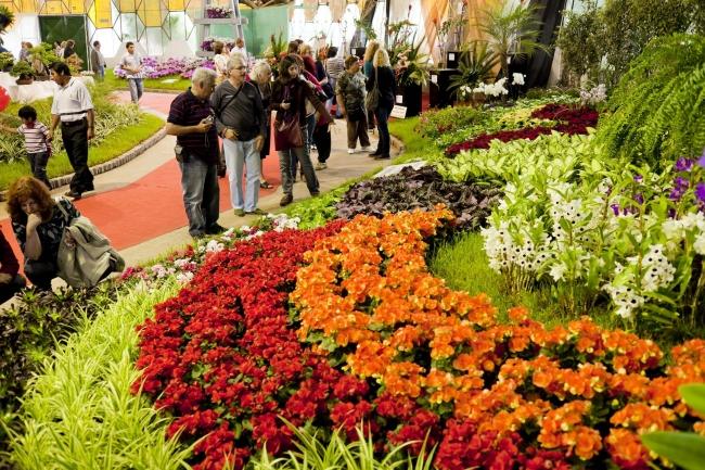Fiesta de la Flor - 29 de Septiembre