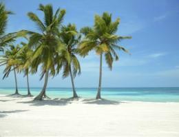 TRAVEL SALE - Paquete a Punta Cana 10 noches - 8 de Junio