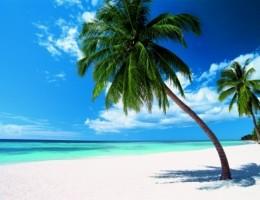 Paquete a Punta Cana -Salidas de Agosto a Diciembre
