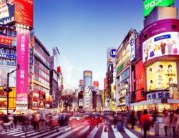 Copa Mundial de Rugby 2019 en Japon - Paquete 3  - Salida 03 de octubre