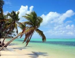 Punta Cana Agosto a Noviembre