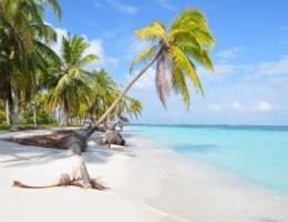 Punta Cana, Ciudad de Panamá y Bocas del Toro