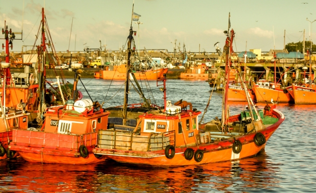 Mar del Plata- Miniturismo